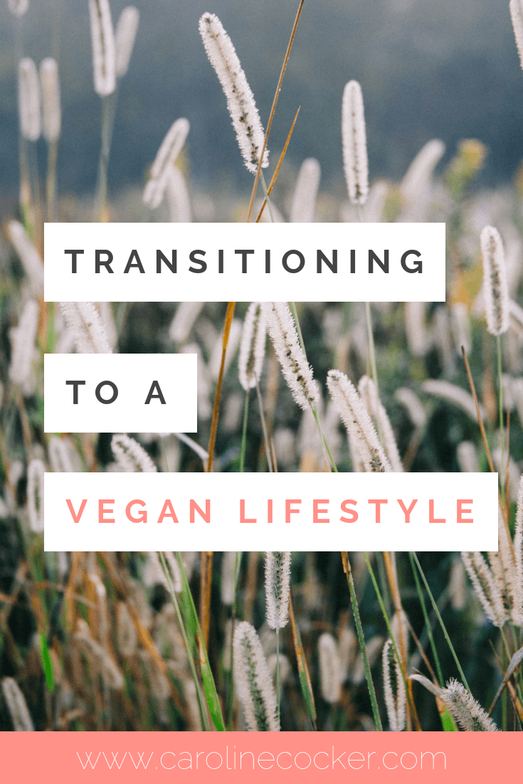 transitioning to a vegan lifestyle