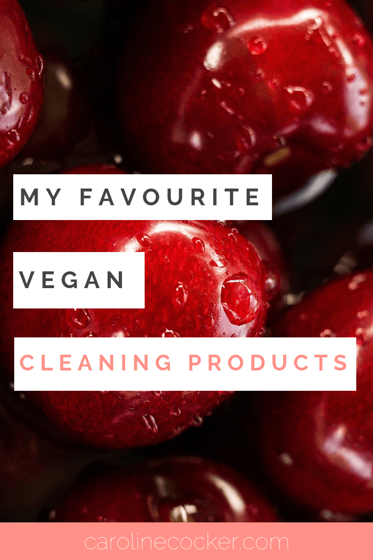 vegan cleaning