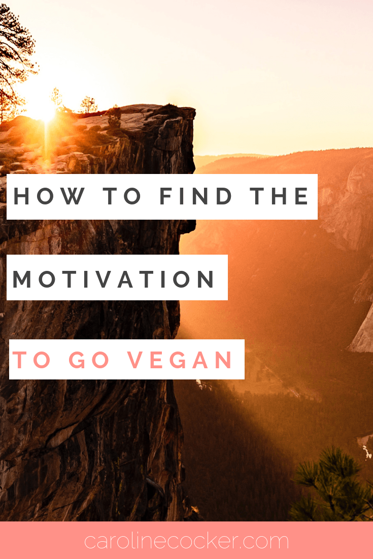 How to find the motivation to go vegan