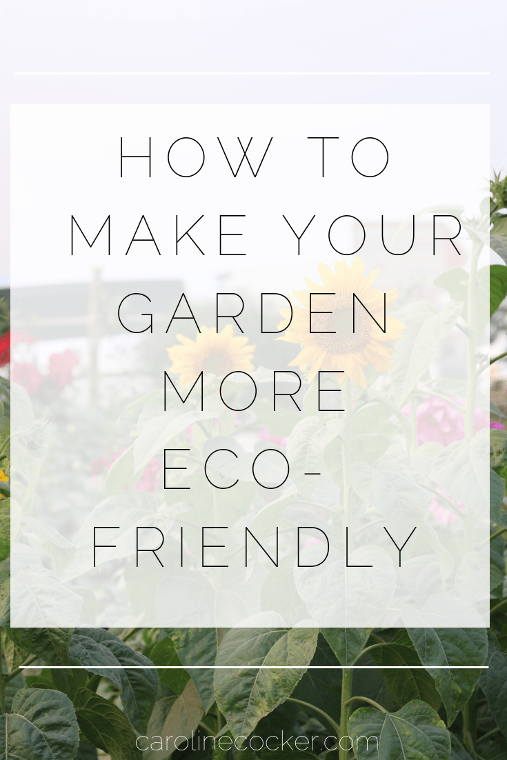 How to make your garden more eco friendly
