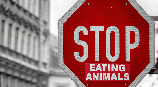 HOW TO GET INVOLVED IN VEGAN ACTIVISM